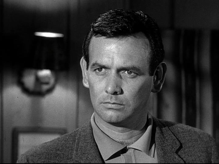 david janssen the fugitive