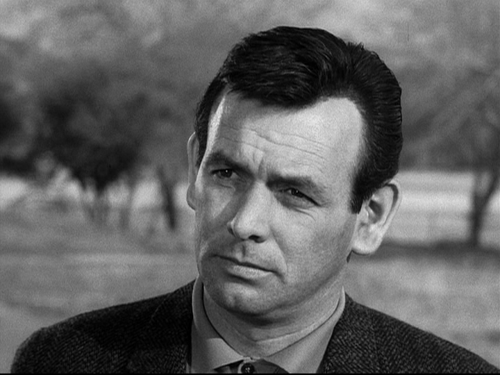 david janssen chanteur